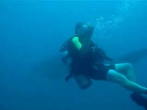 Cabo Pulmo Whale Shark 1