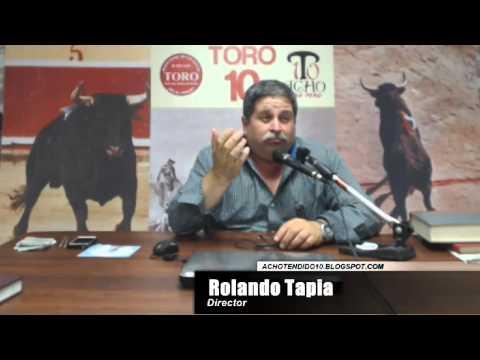 TORO TENDIDO 10 (11.11.14)