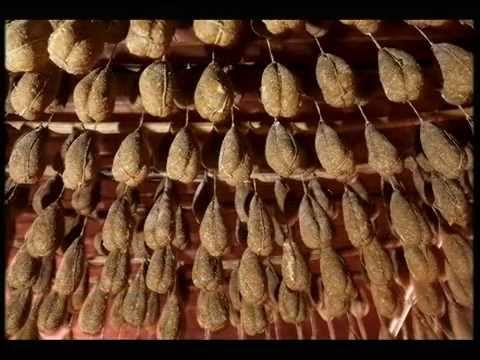 """Museo del Maiale, Carpineto Sinello (Chieti), video didattico, """"Il maiale, vita morte e miracoli"""""""
