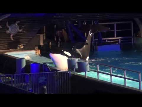 SWT Shamu's Rockin' Creep Show Part 3