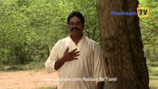 Sivasankari Serial 31-08-2014 Online Sivasankari Sun tv  Serial August-31