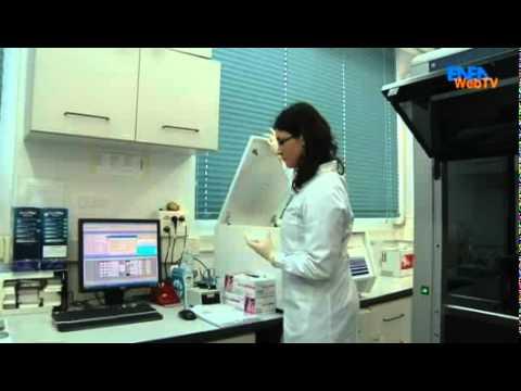 ENEA News - Genechron, un innovativo laboratorio di biotecnologie