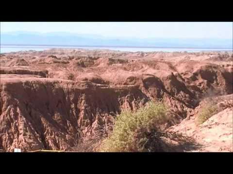 El Golfo De Santa Clara, Giant Prehistoric Tortoise Fossil