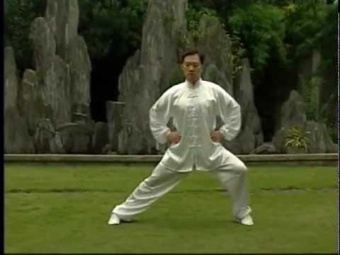LIAN GONG SHI BA FA   18 TERAPIAS ANTERIOR