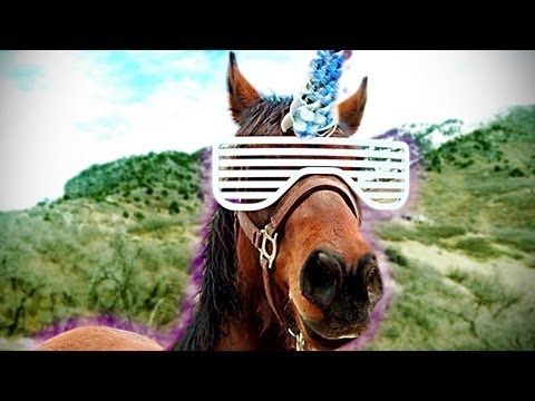 Pimp My Horse