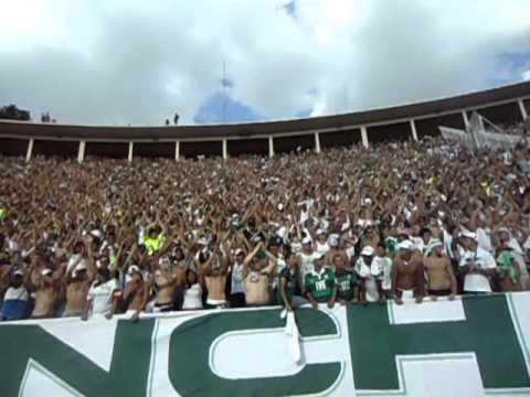 Mancha Verde - Sou Palmeiras Mancha Verde - Eu Sou da Mancha!