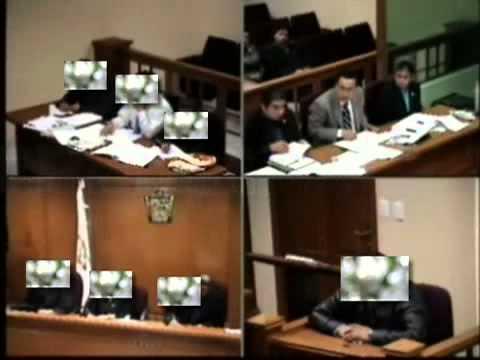 interrogatorio a un perito en un juicio oral penal