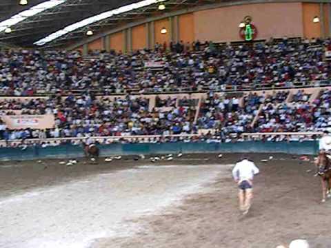 Víctor Flores despues de las 3 mangana a caballo en el excelencia regresando prendas