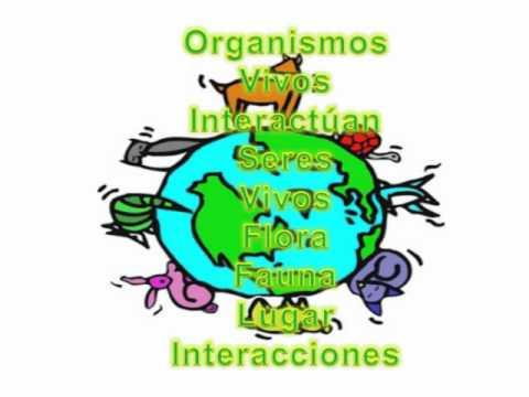 El ecosistema: factores bióticos y abióticos