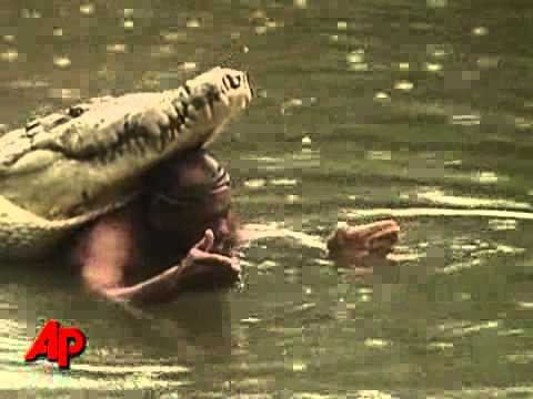 Man and croc the best of friends