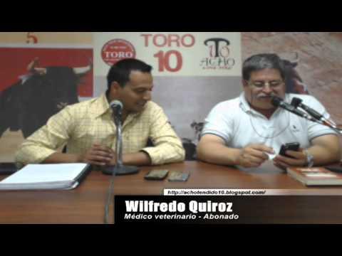 TORO TENDIDO 10 (15.12.14)