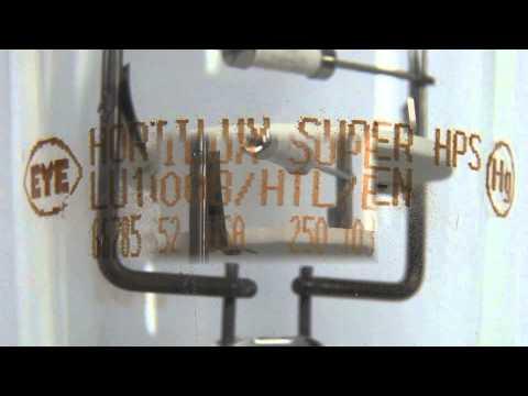 Lamp Monogram and Date Code
