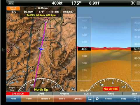 WingX Pro7 - Flight Simulator Low Level