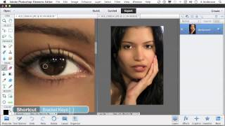 Photoshop Elements 11 Tutorial | Opening One Image in Two Windows