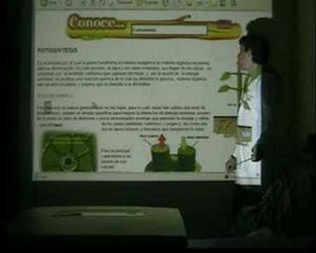 ReinO aNimAl y VeGeTAl ParTE 2