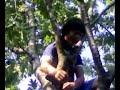 Picture Porno Tarzan Vs Anna