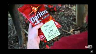 dog dorritos commercial