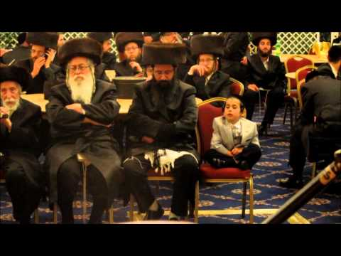 "lipa schmeltzer calls up the tolner rebbe shlit""a"