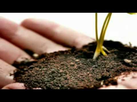 Ontopsicologia Sostenibilità ambientale