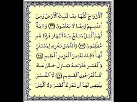 Surah Yasin recited by Sheikh Mishary bin Rashid Alafasy