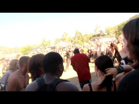 Black guy in a Suicide Silence mosh pit (Aired on Tosh.O)