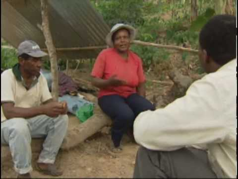 trois personnes de descendance africaine discutent