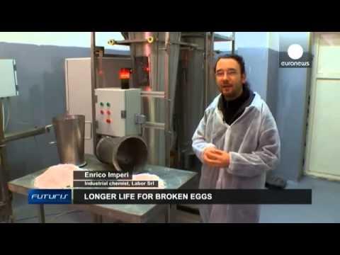 بالفيديو إعادة تدوير قشور البيض والاستفادة منها