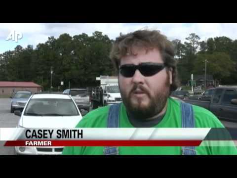Few Americans Take Immigrants- Jobs in Alabama