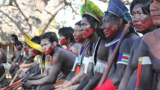 Amazon Watch: Standing with Indigenous Peoples, Defending the Rainforest