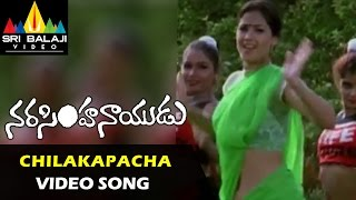 Chilakapachakoka Video Song - Narasimha Naidu