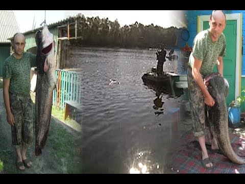 видео ловля на припяти
