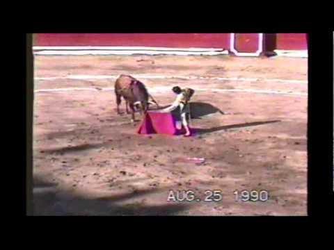 TOROS (Bullfighting) - Faena de Eloy Cavazos - San Luis Potosí (México)