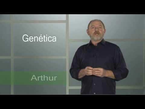Genética - Mande bem no Enem - Trecho da Vídeo Aula