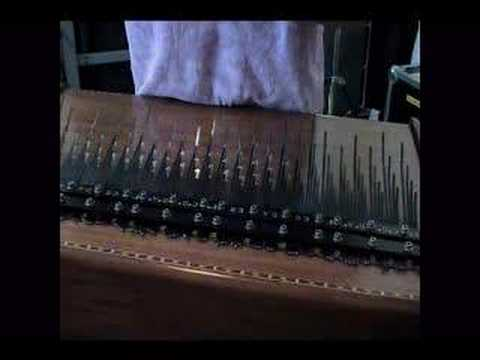 Flight of the Bumblebee clip (Array Mbira)