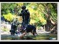 กองทัพไทย 2557 (Royal Thai Armed Forces 2014)