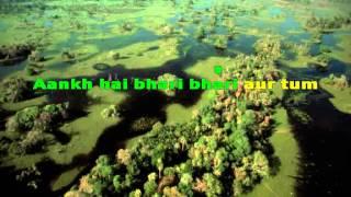 Aankh hai bhari bhari aur tum karaoke with lyrics