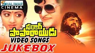 Sardar Papa Rayudu Video Songs Jukebox