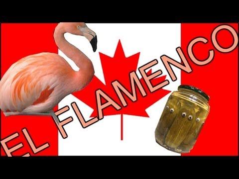 El flamenco |HD|