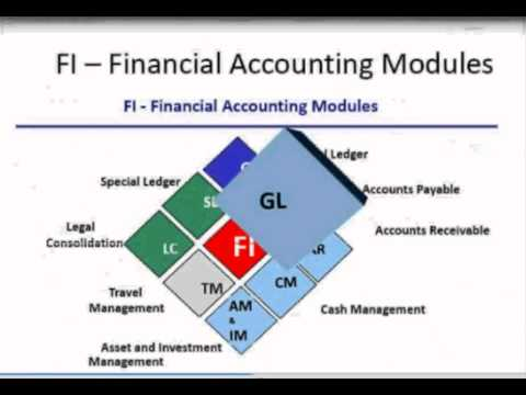 SAP FICO (Finance Controlling) Training demo by Re-cognize.com