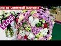 Ольга Матвей. Vlog: Мы на Цветочной  Выставке, Тут Очень Красиво, Здесь Будет  Евровидение 2017