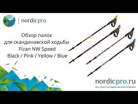Fizan NW Speed blue / Палки для скандинавской ходьбы