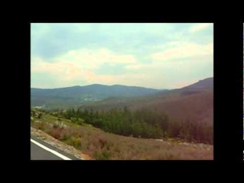 Reserva natural Ancares cerca a fontoria. Prov. León España.