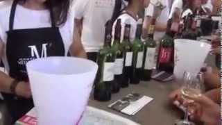 Bordeaux Wine Festival 2014