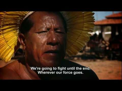 A Last Stand for the Xingu