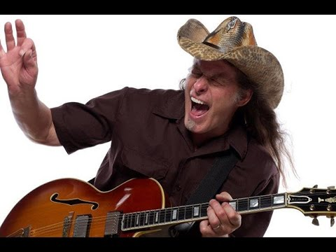 How to play Cat Scratch Fever by Ted Nugent on guitar