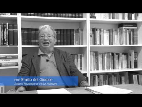 Intervista Prof. Emilio del Giudice - Istituto Nazionale Fisica Nucleare