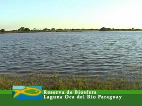 Laguna Oca