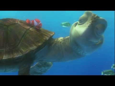 FINDING NEMO 3D Clip - 'The EAC'