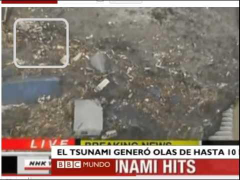Ovni o Sper Animal huye saltando sobre tsunami en Japon