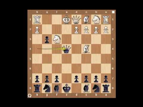 The Anti Gambit Guide for Black: [Part I King's Gambit]: Fischer Defence and Chigorin's Attack